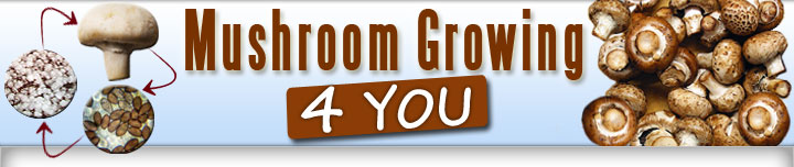 Mushroom Growing 4 You Review-Mushroom Growing 4 You Download